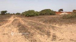 Terrain agricole 4 hectares - Gorom 1