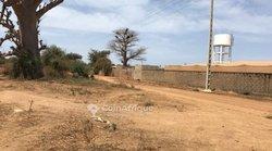 Verger fruitier de 3,18 hectares à Khaye Serère