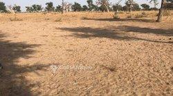 Terrain agricole 4 ha - Ngaye Ngaye