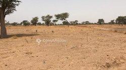 Terrain agricole 6315 m² - Keur Ablaye Diaw