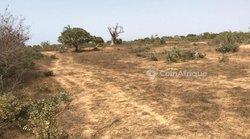 Verger fruitier 3,68 hectares - Ndiar