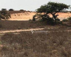 Terrain agricole 16,5 hectares - Gorom 1