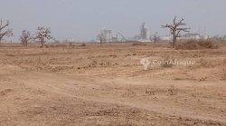 Terrains agricoles 400 ha - Pout