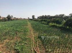Terrains agricoles 28800  m² - Dakar