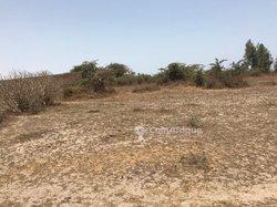 Verger agricole 1,5 hectare -  Gorom 1