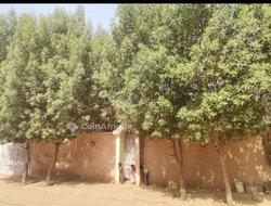 Location villa 5 pièces - Kalaban