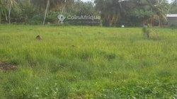 Terrains 500 m²  - Assinie