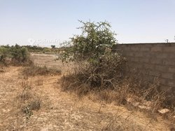 Terrain agricole 9391 m² - Déni Birame ndao