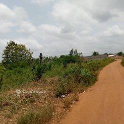 Parcelles - Sékou Allada