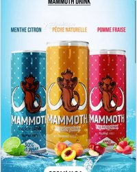Boisson Mammoth