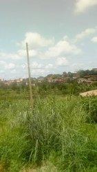 Vente Terrain agricole - Mbalmayo Ovangoule