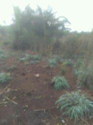 Terrain agricole 10 ha -  Hahotoe