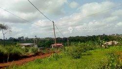 Terrain  agricole - Mbankomo
