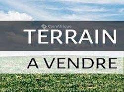Terrains 500 m² - Port-Bouet