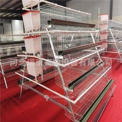 Cages de poulet
