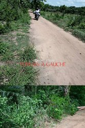Vente Terrain agricole 30 ha - Gamé