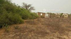Terrains agricoles 2 ha - Yéne Niayre Khaye