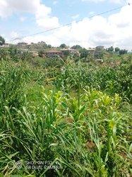 Terrains agricoles  - Mbalmayo Ovangoul