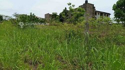 Terrains 3100 m² - Douala