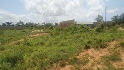 Terrains agricoles - Segbe Akato