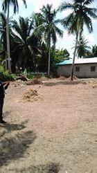 Terrain - Ouidah
