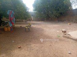 Parcelle 619 m² - Ouagadougou
