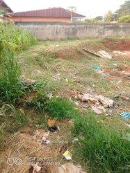 Terrain - Fougerol  Yaoundé