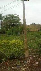 Terrain - Bonamoussadi Douala