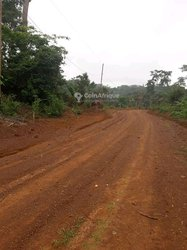Terrain 3ha  à Mbankomo