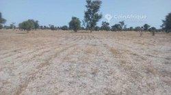 Vente Terrain agricole 1.97 ha - Keur Mandiaye Baar