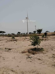 Vente Terrain agricole 2 ha - Mboro Taiba Ndiaye
