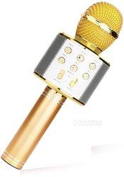Wster karaoke microphone ws-858