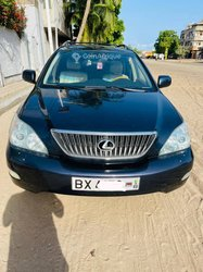 Lexus RX330 2004