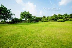 Vente Terrain 500 m² - Agboville