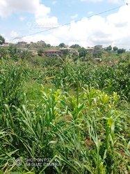 Terrain agricole -  Salmoa Moungo