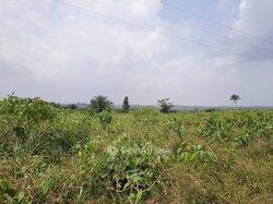 Terrain 53 hectares