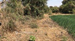 Vente Terrain agricole 3.441 m² - Keur Matar Gueye