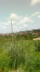 Terrain agricole - Nkongsamba Salmoa