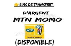 Sims MTN Momo