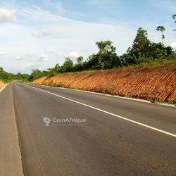 Parcelles agricoles - Voie Agboville