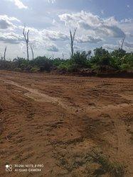 Vente Terrain agricole 40 ha - Dibamba Missolè ll