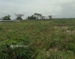 Terrains agricoles 2300 m2 - Cocody