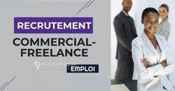Offre d'emploi - agent commercial