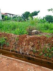 Terrain agricole 4 ha - Mbalmayo