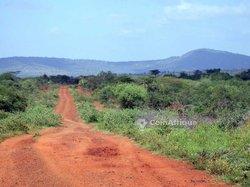 Terrains agricoles 60000 m2 - Yaoundé