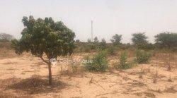 Terrain agricole  3 hectares - Keur Matouré
