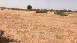 Terrain agricole 2 ha - Thienaba khabane