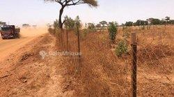 Verger agricole  4181 m² - Tassette