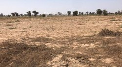 Terrain agricole 3,6 hectares - Ndioukhane
