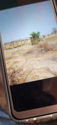 Vente Terrain 100000 m² - Ouagadougou